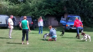 Dog First Aid Blandford 2014