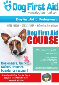 Dog First Aid Course Dorset